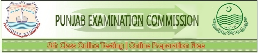 Punjab 8th Class Model Papers Download Past Sample Papers for PEC