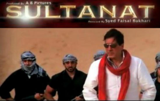 The Pakistani Movie Sultanat