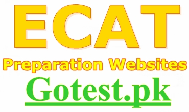 ECAT Preparation Websites for Online Practice