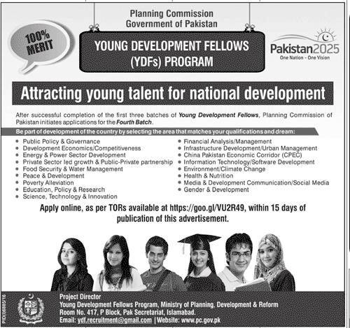young development fellows program 2017