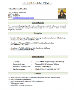 Best New Cv Formats Design 2019 In Pakistan For Fresher Students And