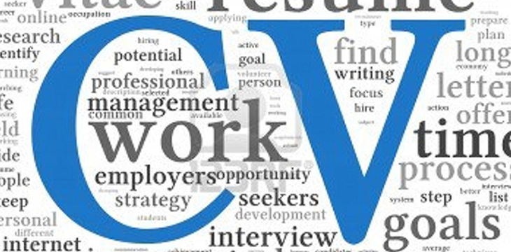 CV Formats in Pakistan for Professionals in MS Word Format